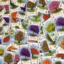 Kép 3/3 - Arborétum kártyajáték