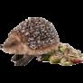 Kép 4/4 - Az erdő állatai (40 db) (56239) +2 db AJÁNDÉK Schleich figura a dobozban